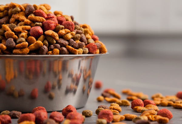 New Pet Food -passione per il petfood