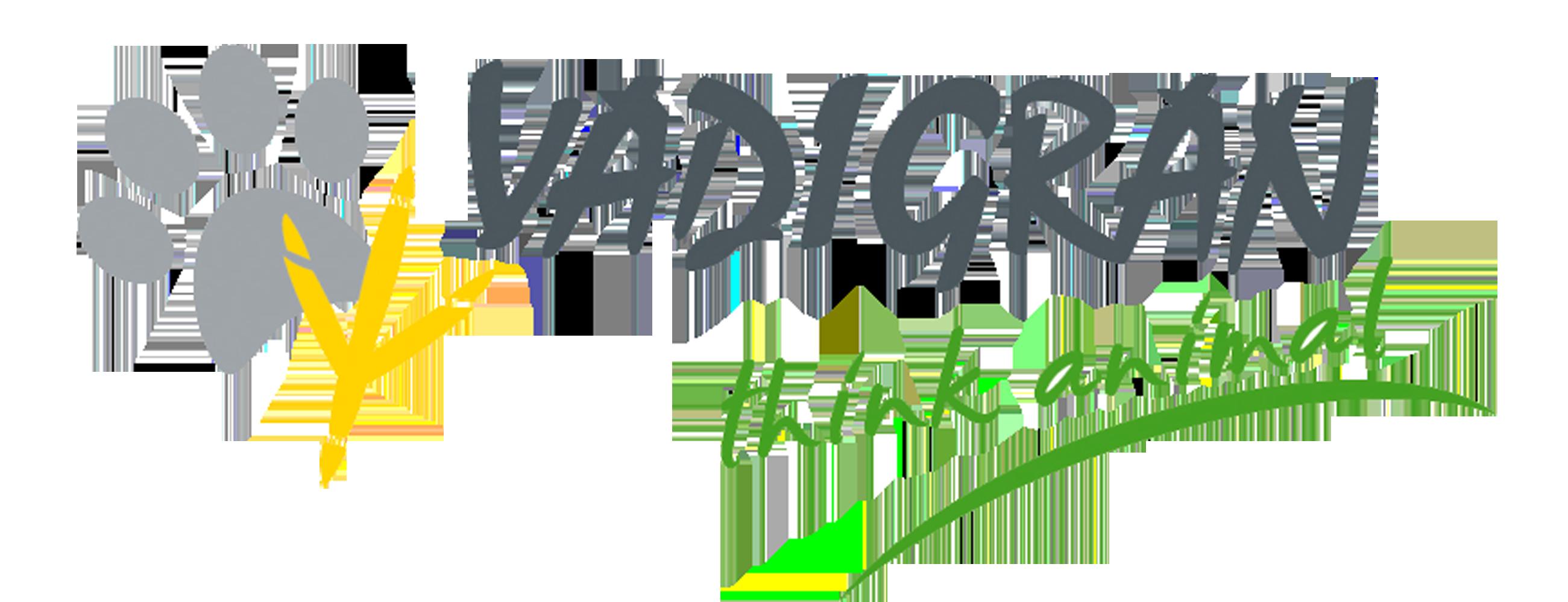 Logo - Vadigran