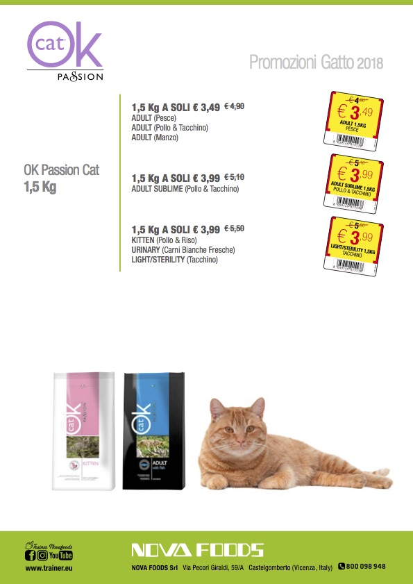Promo Ok Passion Cat