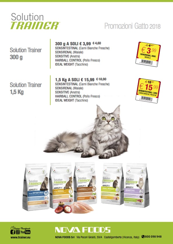 Promo Solution Trainer gatto