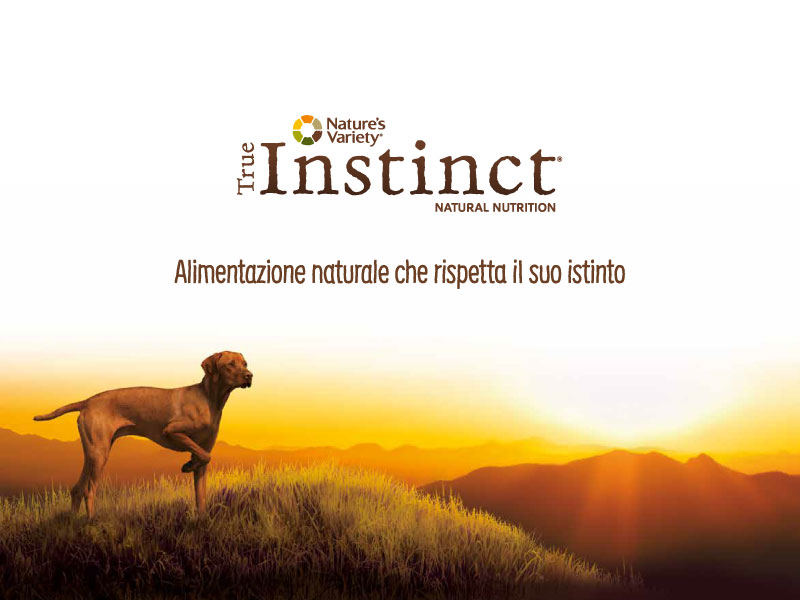 Instinc new pet food