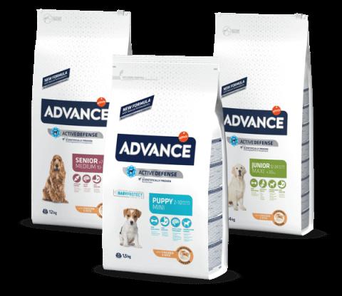 New Pet Food - Advance Cane