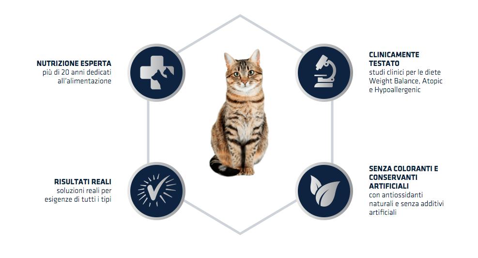 Advance - Nutrizione Gatto