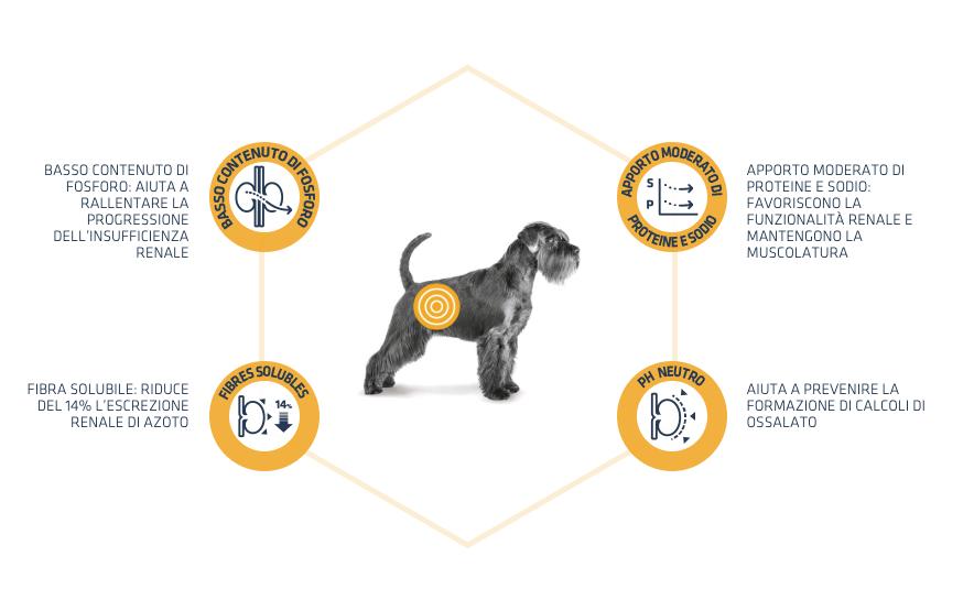 benefici advance renal - New Pet Food