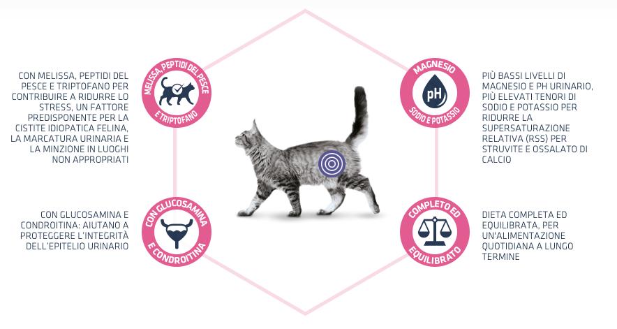 benefici advance urinary stress - New Pet Food