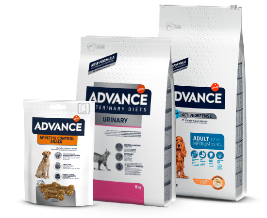 New Pet Food - Advance Cane e Gatto