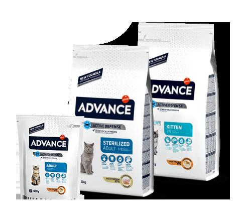 New Pet Food - Advance Gatto