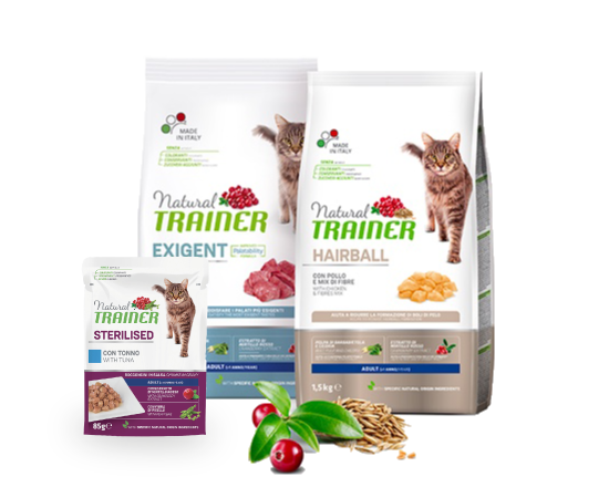 New Pet Food - Natural Trainer Gatto